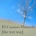 camino humedo